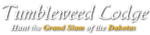 Tumbleweed Lodge